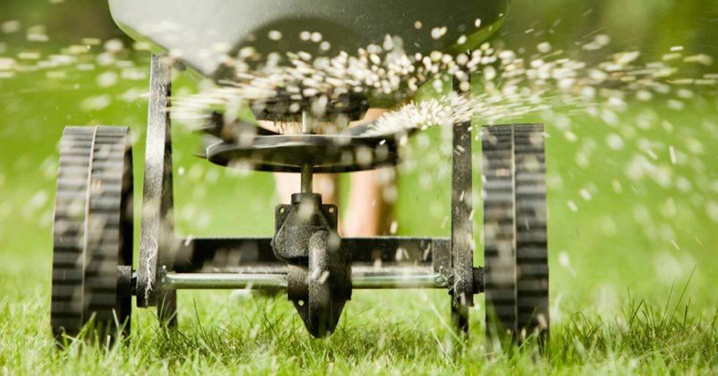 Killing Grass Natural Way