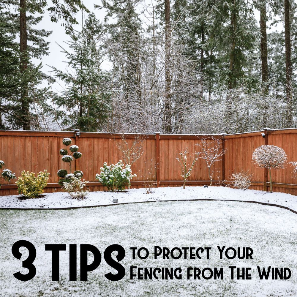 protect your fence from the wind